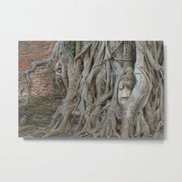 Wat Mahathat's Buddha Head in Tree Roots Metal Print