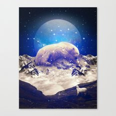 Under the Stars | Ursa Major II Canvas Print