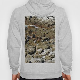 Penguin Colony Boulders Beach, Cape Town, South Africa Hoody