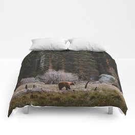 BEAR IN THE FOREST Comforters