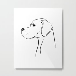 English Pointer (Black and White) Metal Print