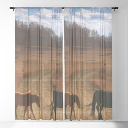 Herd Of Horses Grazing On Meadow Ultra HD Sheer Curtain