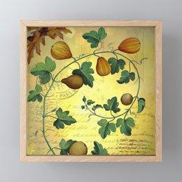 Vintage Botanical Collage, Autumn Pumpkins Framed Mini Art Print
