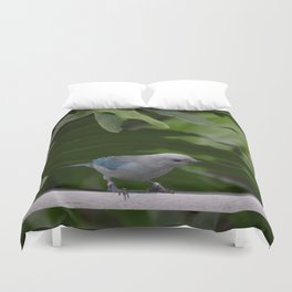 National Aviary - Pittsburgh - Blue Grey Tanager Duvet Cover