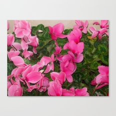 Flowers Hanging Out With leaves Canvas Print