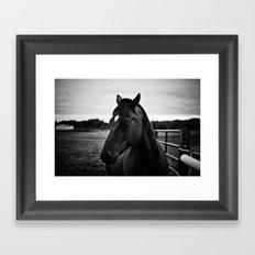 The Secret of the Horse Framed Art Print