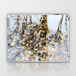 Winter Reflection Laptop & iPad Skin