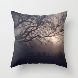 Cemetery Morning Throw Pillow