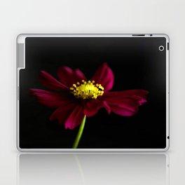 Elegance of a Cosmo Laptop & iPad Skin