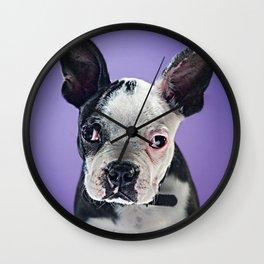 Super Pets Series 1 - Super Bugsy 2 Wall Clock