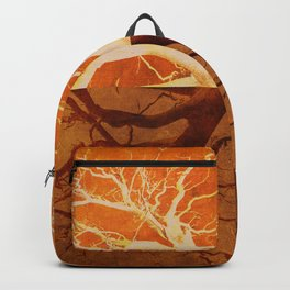 Tree Reflection of Copper Backpack