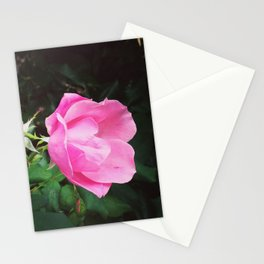 Natural Romance Stationery Cards