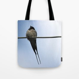 The noble barn swallow Tote Bag