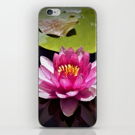 Pink Waterlily Reflects iPhone Skin
