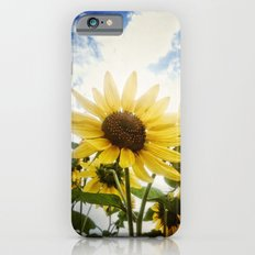 Summer Sunflower Sky iPhone 6s Slim Case