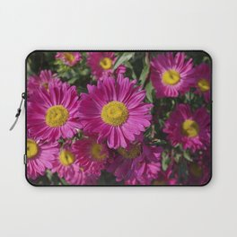 Summer Asters 4636 Laptop Sleeve