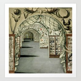 Museum of Curiosities Art Print