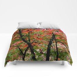 Japanese Maple Comforters