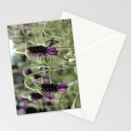 Lavender Card 3 Stationery Cards