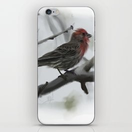 House Finch iPhone Skin