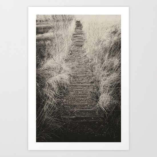 Way Of The Past Art Print