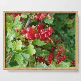 Currants Serving Tray