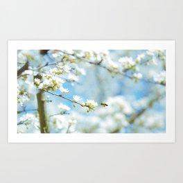 Flower Photography by Karsten Würth (@karsten.wuerth) Art Print