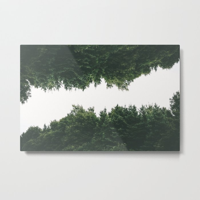 Forest Reflections VI Metal Print