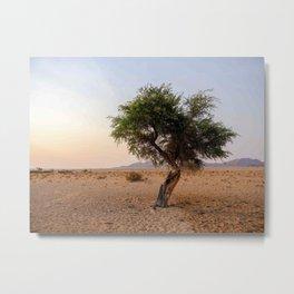 Desert Tree Metal Print