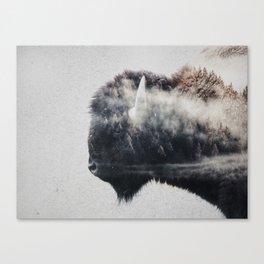 Wild West Bison Canvas Print