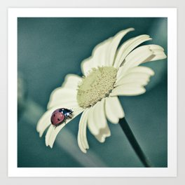 The little ladybug Art Print