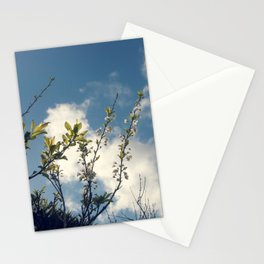 Growth / 3 Stationery Cards