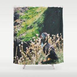 Puffin On Staffa Island Shower Curtain