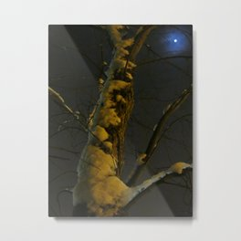 Blue Moon And Golden Snow Metal Print