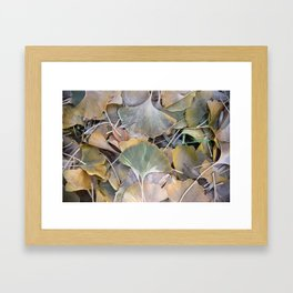 Fall Ginko Leaves Framed Art Print