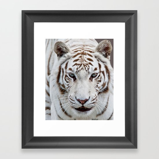 TIGER TIGER Framed Art Print