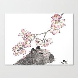 Capybara and petals Canvas Print