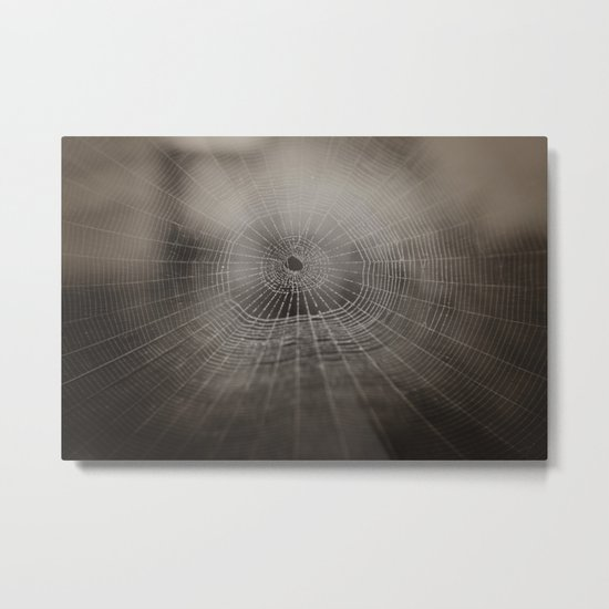 Oh What a Tangled Web We Weave.......  Metal Print