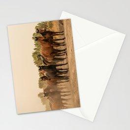 Wild Horses 6587 - Northwestern Nevada Stationery Cards