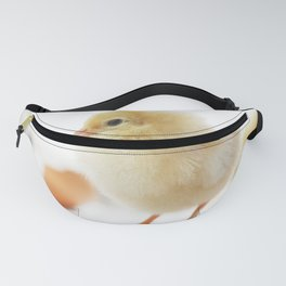 Baby of the family Cute Chicken Chick Fanny Pack