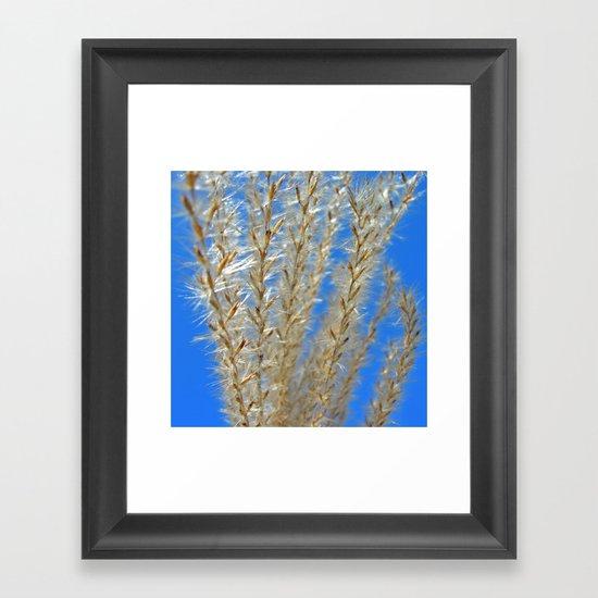 soft grasses II Framed Art Print