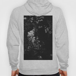 Fluidity, Lucidity and Existing in the Expanse Hoody