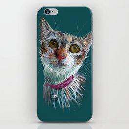 Tofu cat iPhone Skin