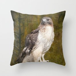 Red Tailed Hawk perched on a branch in the woodlands Throw Pillow