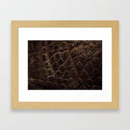 Safari Animal Skin Framed Art Print
