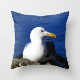 Seagull resting on Blue Ocean Background Throw Pillow