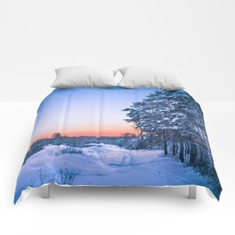 A path in enchanted forest Comforters