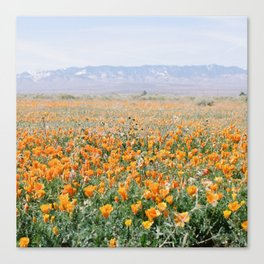 antelope valley Canvas Print