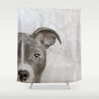 pitbull Shower Curtains featuring Pitbull by MiartDesignCreation