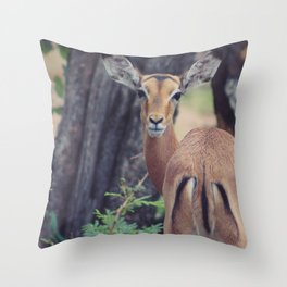 deer in forrest picture Throw Pillow